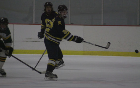 Men's hockey aims high heading to the playoffs