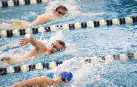 Men's swimming finishes fifth in state