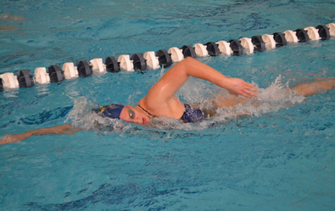 Swimming hopeful for success at State meet