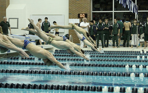 Men's swimming & diving expect to place third at state meet