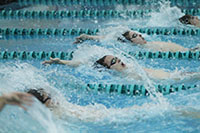 Men's swimming starts off season with  undefeated record