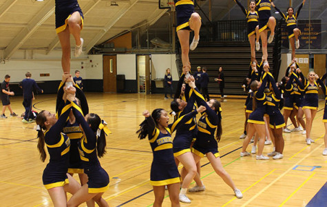 Cheerleading places sixth at IHSA Sectionals