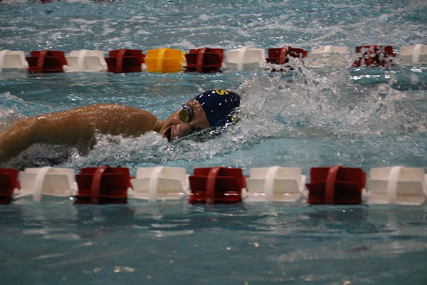 Fast    freestyle:  Taking a breath during the race, sophomore Nikki Dontcheva swims a freestyle stroke against Niles West on Oct. 21. The Titans defeated the Wolves by a score of 121-65. The next time the girls hit the pool will be Nov. 5. for their Conference meet
