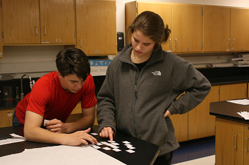 While working in their biology class, Mike Hatfield and Abby Coleman perform a lab.  Along with others, these S.T.E.M. juniors students took part in the project Cancer for the Common Good which shed new light on how to cure different diseases with cancer cells.
