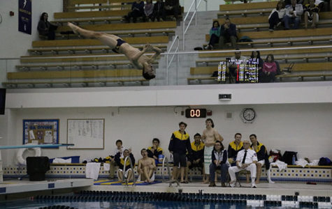 Men's Diving prepares for Conference