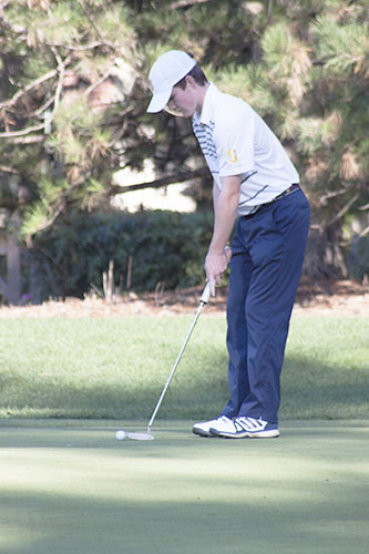 SAVVY SWINGS:  Lining up a shot, Captain Brian O'Connor watches as he sinks a putt during the Titans' match against Hersey High School on Sept. 19. The team looks to make it back to state.