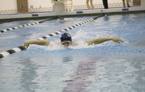 Swim & Dive makes a splash this season