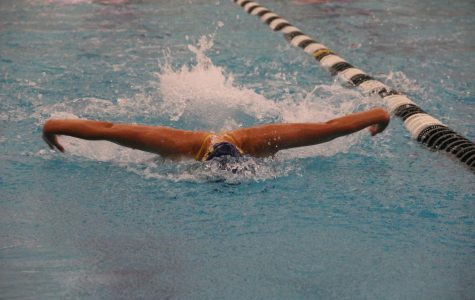 Girls' Swim aims to achieve individual goals