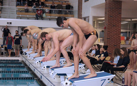 Men's swimming looks to succeed in post-season