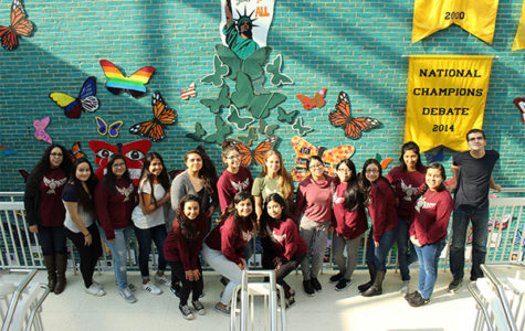 SOAR  butterfly display encourages inclusivity, awareness