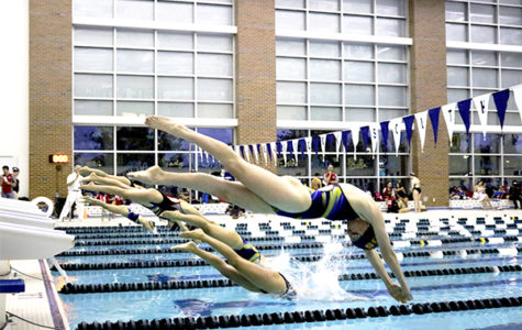 Women's swim & dive looks to qualify for State