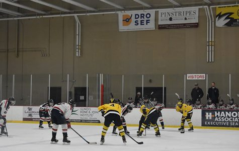 Strong team bonds anchor the success of boys' hockey